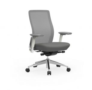 Cherryman Eon 300 LB Ergonomic Task Chair with White Frame